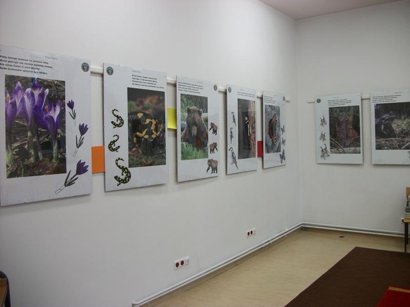 Zdjęcie z artykułu: Wystawa Z KSIĘGI NATURY